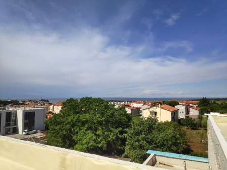 Apartment Novigrad, Vidal 6